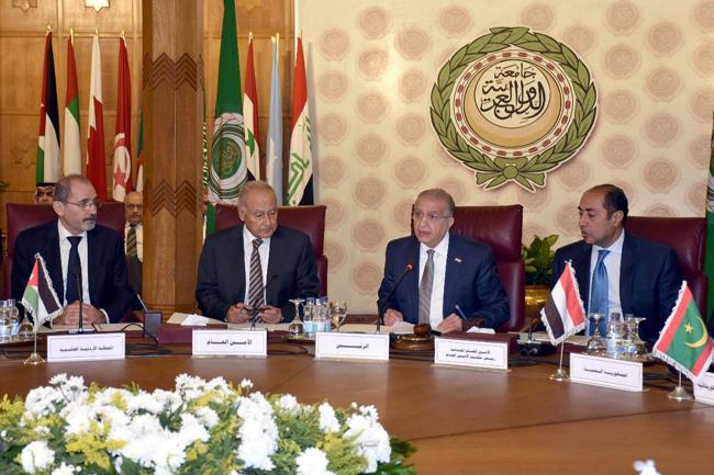 Foreign Minister meets Arab League Secretary General 1.jpeg